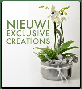 ExclusiveCreations