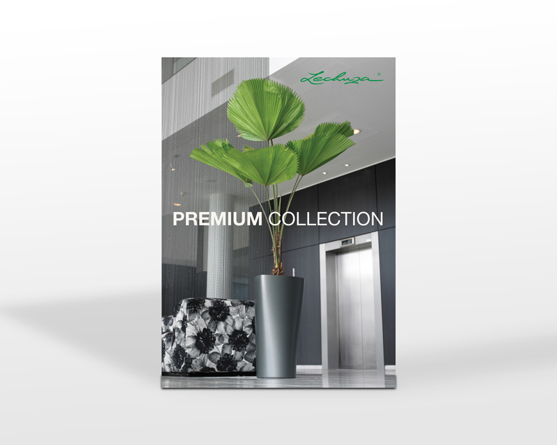 brochure-blanco-2