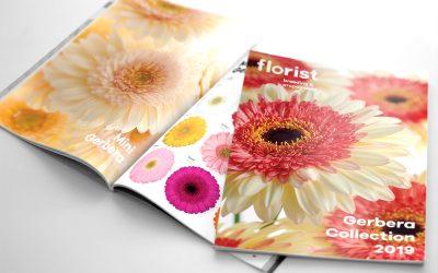 FLORIST® Gerbera Catalogus 2019